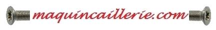 Logo vis Pozidrive inox A4